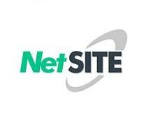Netsite-3.jpg